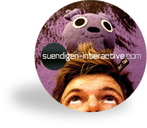 suendigen-interactive.com-log